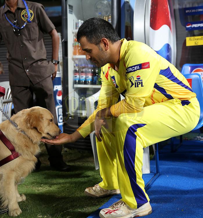 एक बार फिर चेन्नई से खेलते नजर आयेंगे महेंद्र सिंह धोनी, खुद तस्वीर शेयर कर कही मन की बात 16