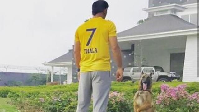 सबको थी उम्मीद चेन्नई की तरफ से आईपीएल 11 खेलेंगे धोनी, और अब खुद धोनी ने कह दी ये बात 3
