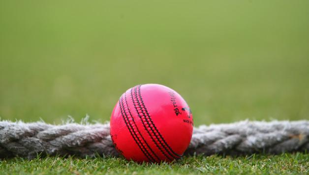 जाने क्या है वो कारण जिसकी वजह से गुलाबी गेंद भारतीय क्रिकेट के लिए नहीं है सही, आगे नहीं मिलेंगे अच्छे भारतीय खिलाड़ी 2