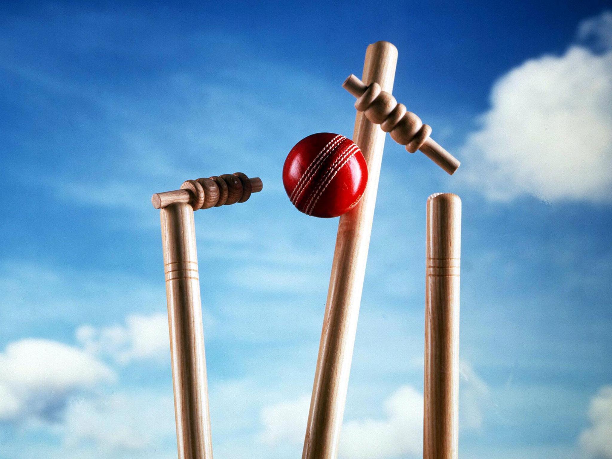 इस भारतीय खिलाड़ी को बीसीसीआई ने अपने अम्पायर पैनल में किया शामिल 4