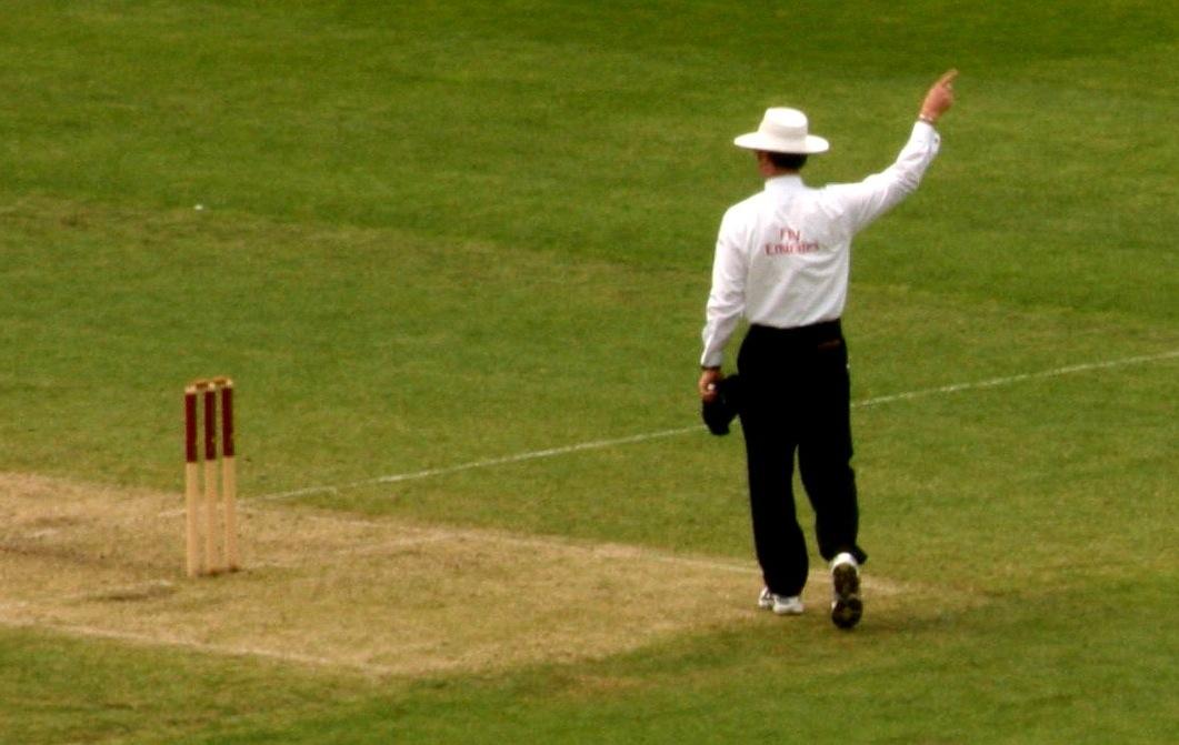 Cricket Umpire 1 1