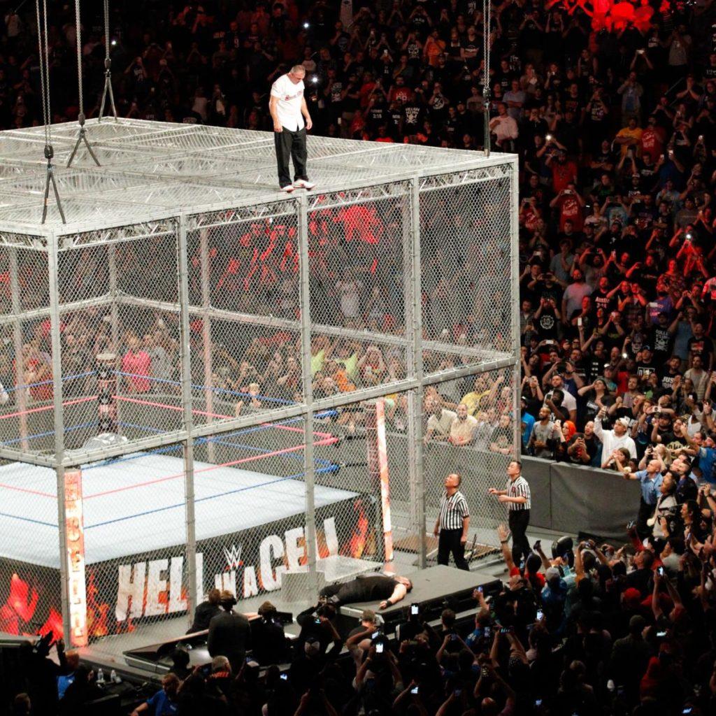 WWE NEWS: 20 फिट ऊपर से कूदने के बाद शेन मैकमोहन हुए चोटिल, शरीर के इन हिस्सों में आई चोटे 3