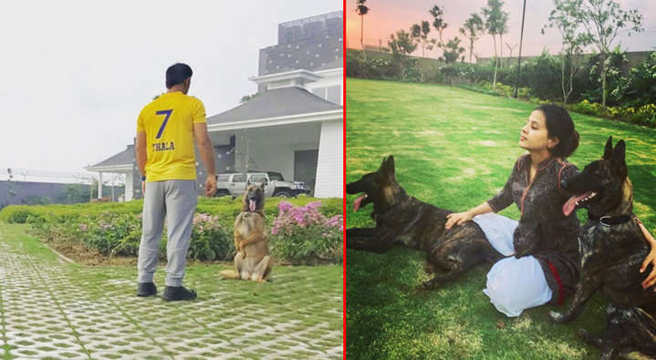 Photos: MS Dhoni's Lavish House In Ranchi