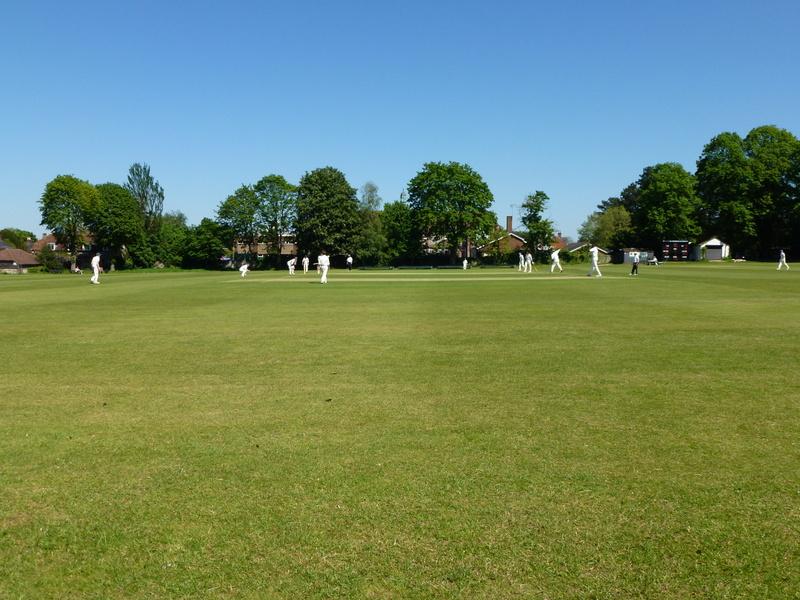किसानों पर भी चढ़ा क्रिकेट का खुमार गेंहू की फसल काट बनाया क्रिकेट स्टेडियम 2
