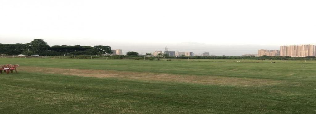किसानों पर भी चढ़ा क्रिकेट का खुमार गेंहू की फसल काट बनाया क्रिकेट स्टेडियम 1