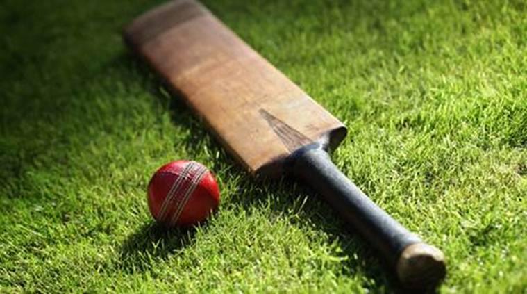 किसानों पर भी चढ़ा क्रिकेट का खुमार गेंहू की फसल काट बनाया क्रिकेट स्टेडियम 3