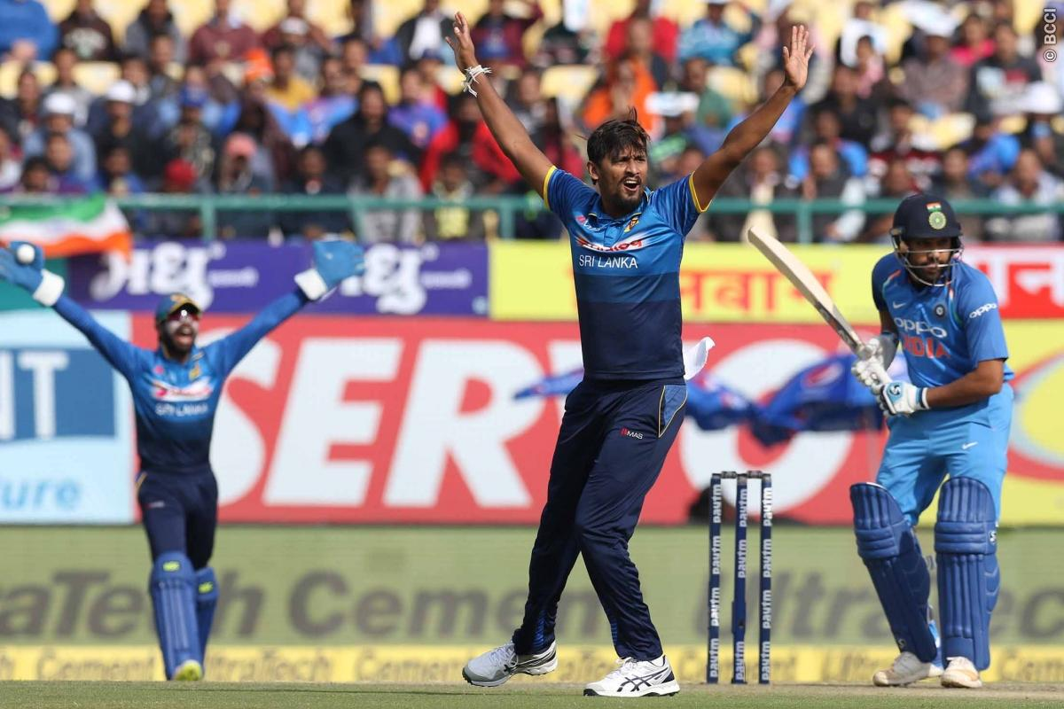 किसने क्या कहा: भले ही भारत ने बनाया कम स्कोर फिर भी ट्वीटर पर छाये धोनी, लेकिन सर जडेजा ने दी चौकाने वाली प्रतिक्रिया 1