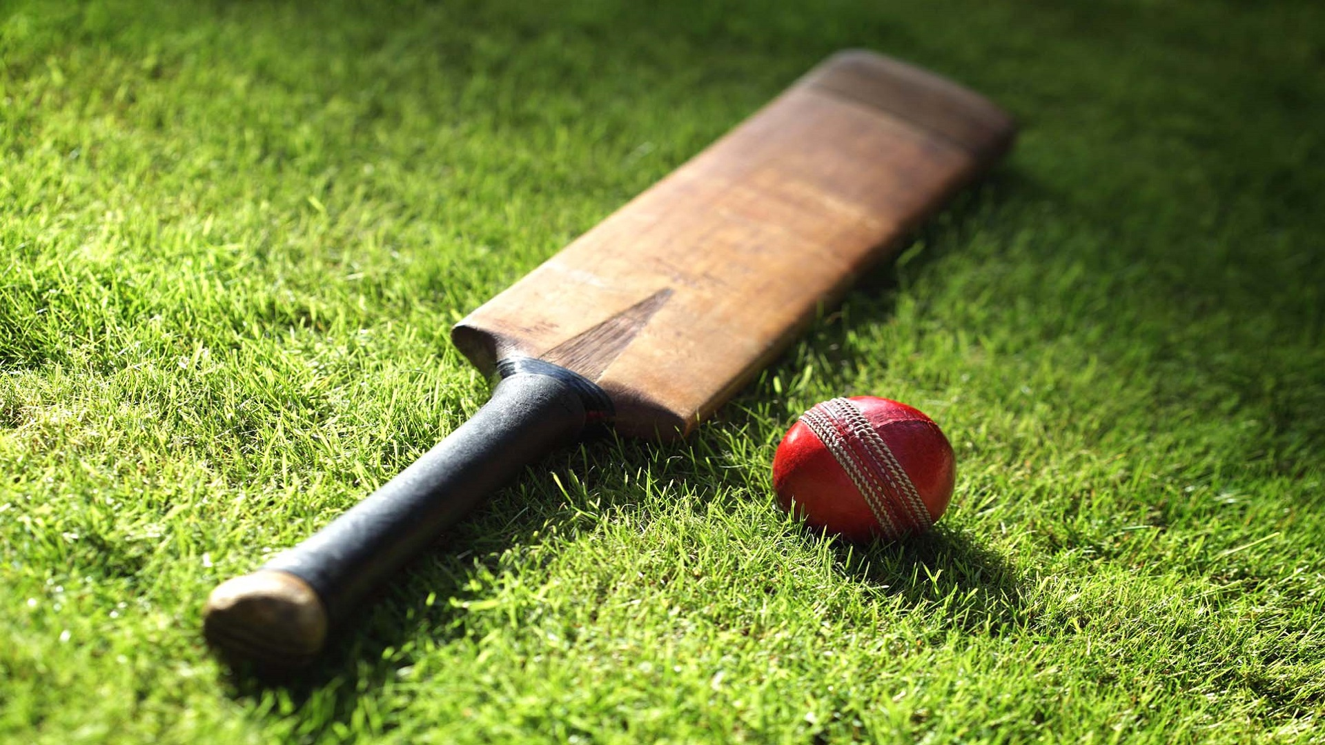 महेंद्र सिंह धोनी के बाद टीम इंडिया के दो स्टार खिलाड़ियों ने भी लिया घरेलू टी20 टूर्नामेंट से अपना नाम वापस, वजह जान हैरान रह जायेंगा आप 1