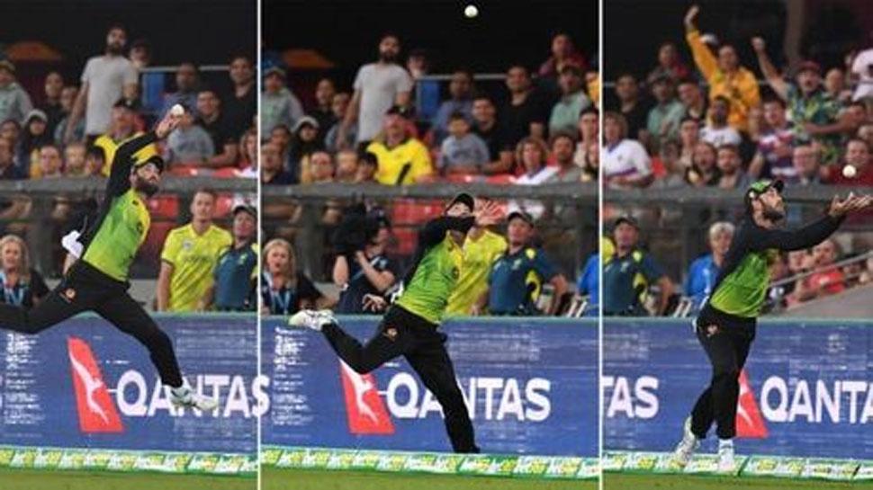 मैक्सवेल ने लिया साउथ अफ्रीका के खिलाफ इस सदी का सबसे हैरान करने वाला कैच