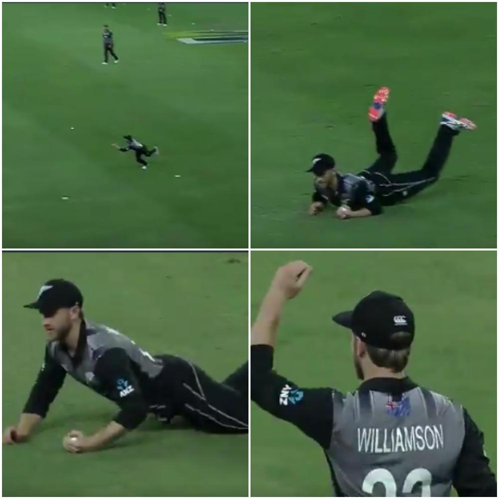 पाकिस्तान के खिलाफ टी-20 मुकाबले में केन विलियमसन ने लपका करिश्माई कैच, वीडियो देख नहीं होगा यकीन
