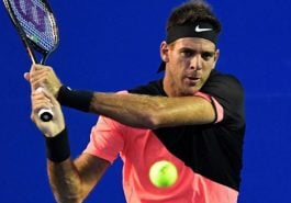 Del Potro out of the Mexican Open