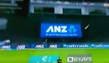 वीडियो : 14.5 ओवर में बड़ा शॉट खेलने के चक्कर में हार्दिक पांड्या के हाथ से छुटा बल्ला फिर हुआ कुछ ऐसा 2