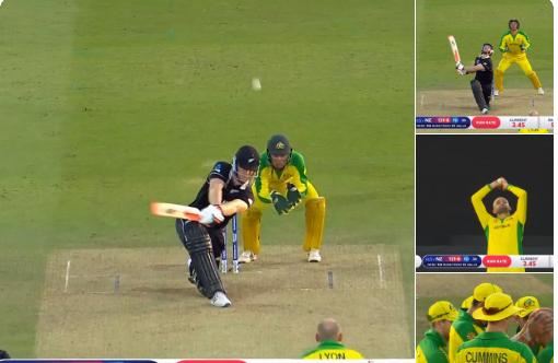 AUSvsNZ : ऑस्ट्रेलिया ने न्यूजीलैंड को 88 रन से हराया, देखें मैच का पूरा स्कोरकार्ड 1