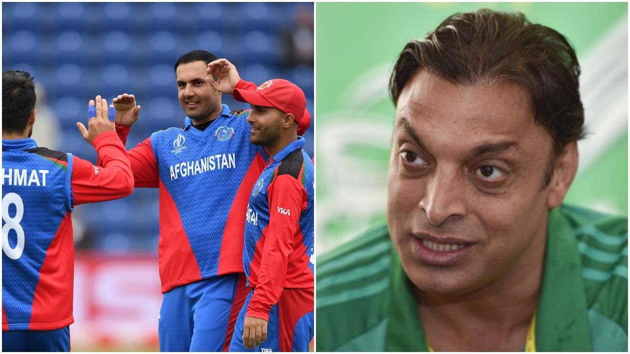 पाकिस्तान पर कमेंट के लिए शोएब अख्तर ने अफगानिस्तान क्रिकेट के सीईओ को दिया करारा जवाब 1