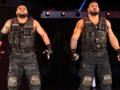WWE के फैंस को मिली बुरी खबर, भारतीय रेसलर और उनका साथी हुआ बाहर 12