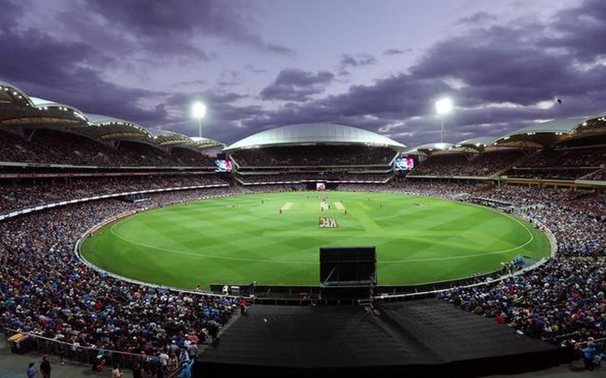 क्रिकेट ऑस्ट्रेलिया के सीईओ ने डे-नाईट टेस्ट को लेकर अब दिया बयान, फैन्स ने लिए आई खुशखबरी 1