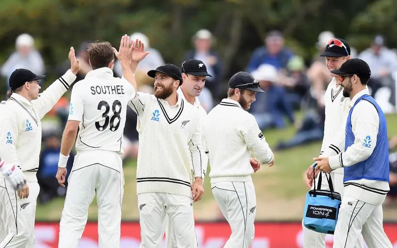 आईसीसी टेस्ट चैंपियनशिप के फाइनल में पहुंची न्यूज़ीलैंड तो भारतीय फैंस ने ऐसे किया रिएक्ट, देखें 7