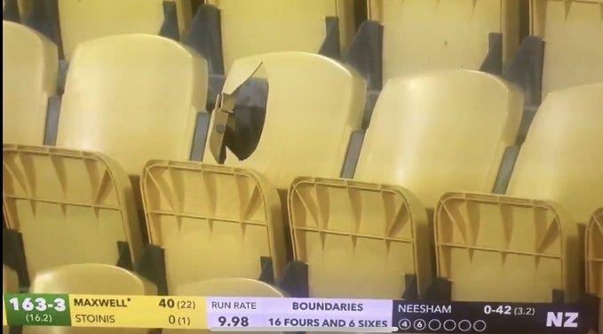 न्यूजीलैंड के खिलाफ टी20 मैच में ग्लेन मैक्सवेल के छक्के से टूटी कुर्सी, स्टेडियम के अधिकारी ने उठाया ये कदम 1